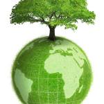 Экология на Земле